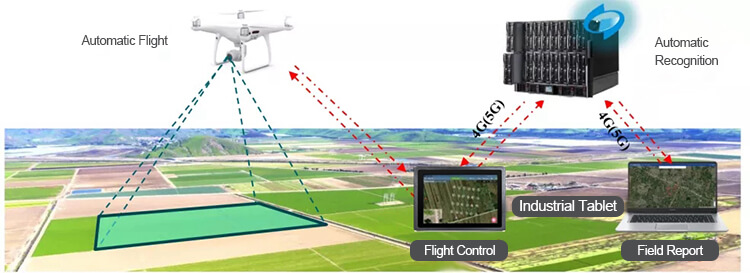 Mechanization and Intelligent Automation On Food Production and Data